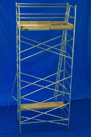 scaffolds
